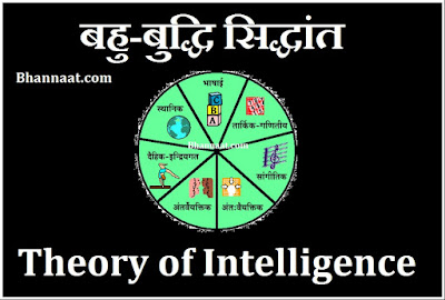 Intelligence Theory Psychology in Hindi Language