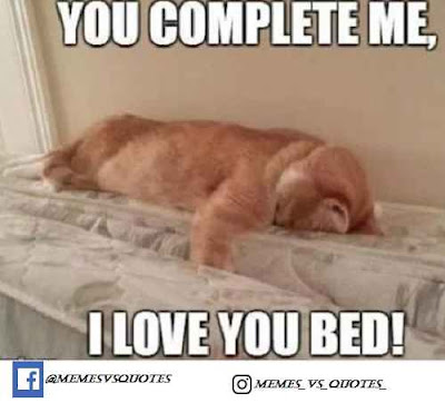 I love you bed
