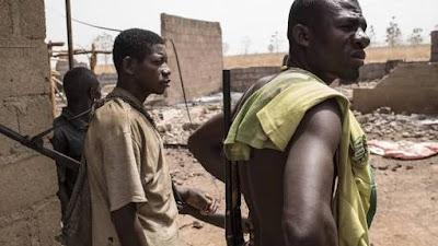 Herdsmen Strike Again... Kill Two Brothers