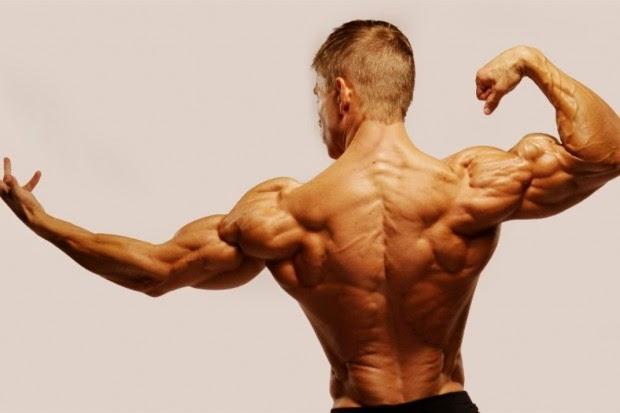 Kortyzol i wpływ na sylwetkę