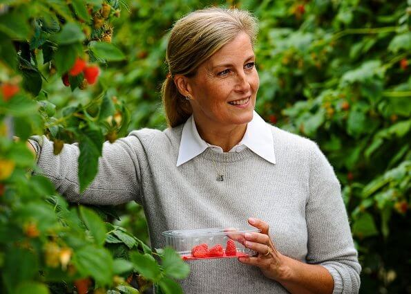 New For­est Fruit com­pa­ny produces strawberries and a new crop, blue honeysuckle berries. The countess wore a grey cashmere sweater