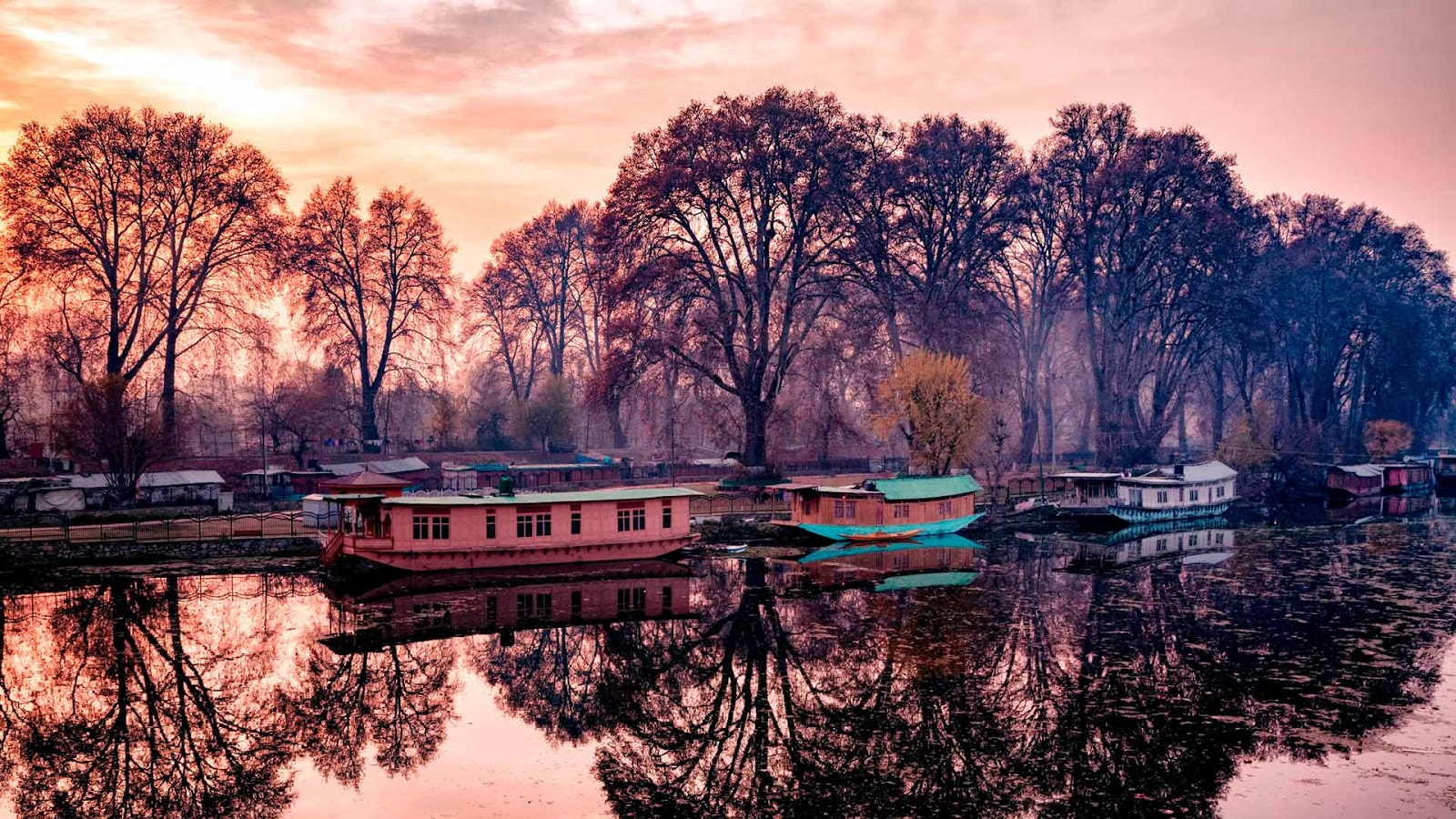 Houseboats on bank of the Jhelum River, India
