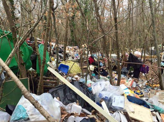 Camp et décharge en forêt de Fontainebleau !