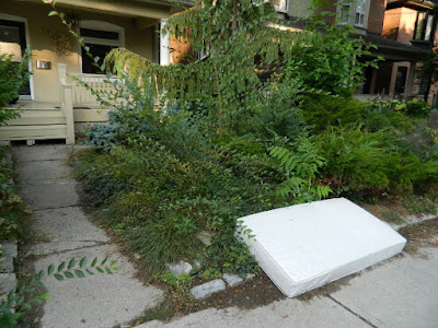 Leslieville fall cleanup before Toronto Gardening Services