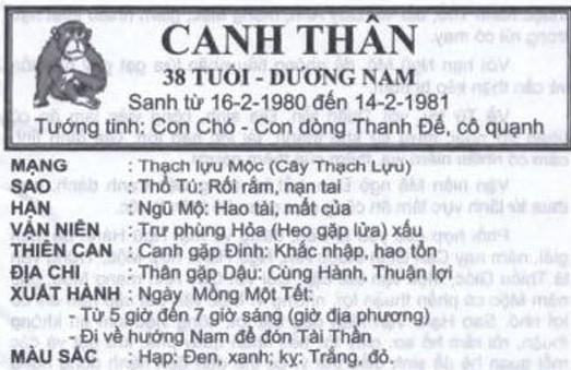 TỬ VI TUỔI CANH THÂN 1980 NĂM 2017