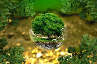 Etika Lingkungan dan Kebijakan Pemerintah