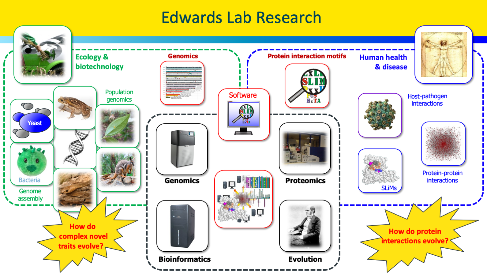 Overview of Edwards Lab research topics