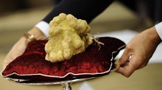 Jamur White Truffle