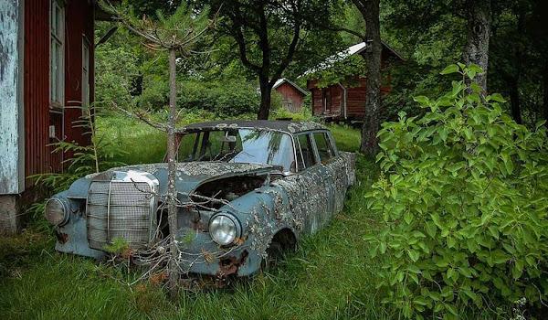 Çürümeye Terk Edilmiş Zamanın Görkemli Arabaları