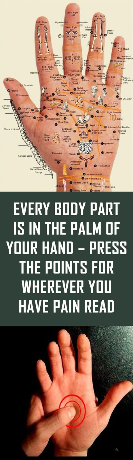 Hand Pressure Points To Relieve Pain