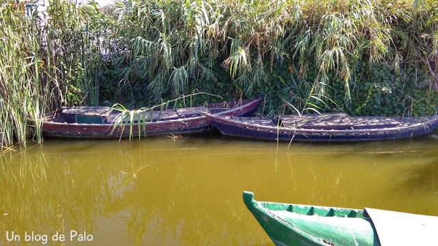 Barcas zona embarcadero
