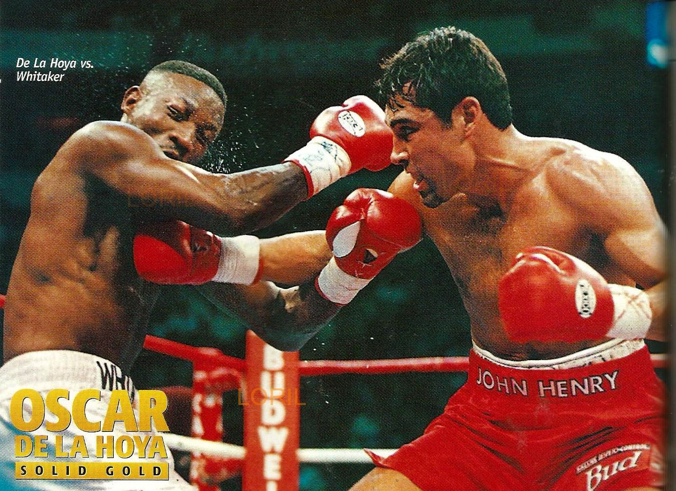 Since turning pro in November 1992, with a first-round knockout of Lamar Williams, De La Hoya maintained a perfect record of 29 victories with no defeats ...
