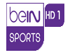 bEIN Sport 1 - EN DIRECT