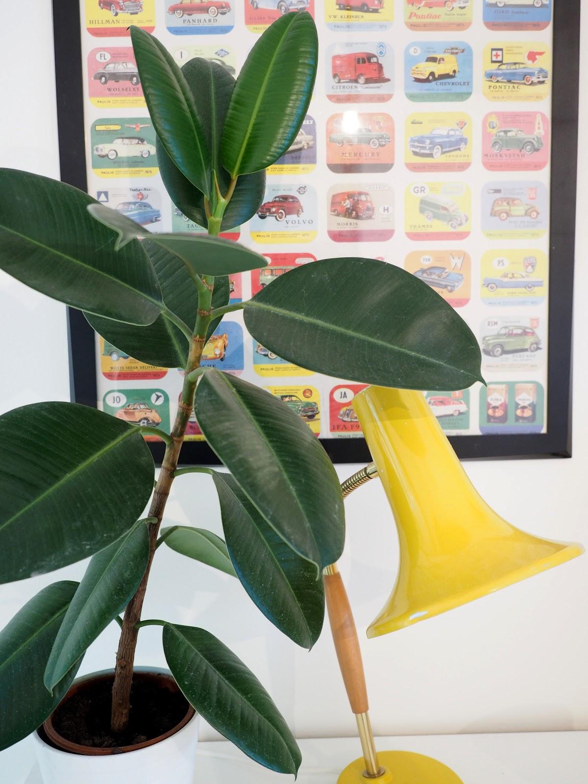 retrolamppu, viherkasvi, värikäs lastenhuone