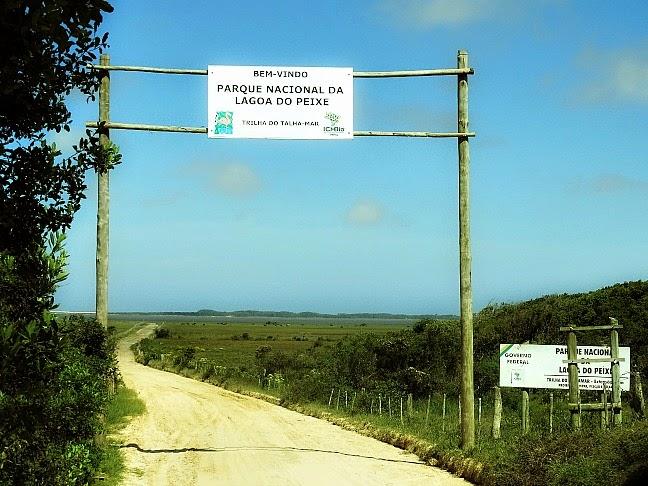 Parque Nacional da Lagoa do Peixe, Tavares