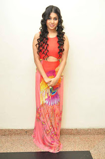 Hamida Picture Gallery at Bhadram Be Careful Brother Audio Launch | ~ Bollywood and South Indian Cinema Actress Exclusive Picture Galleries