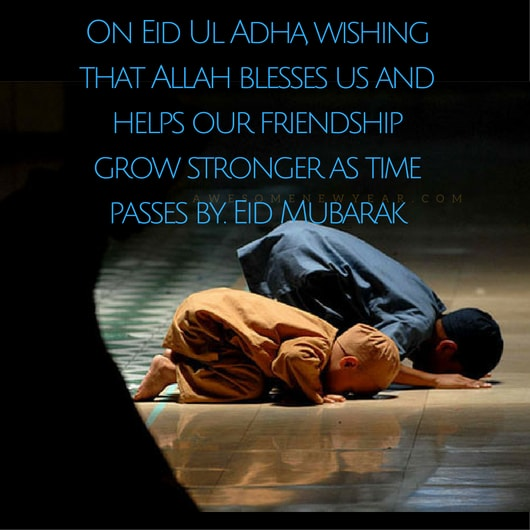 Awesome Eid al-Adha Quotes with Images for free download