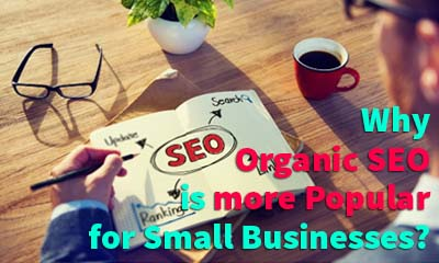 Reasons Why Organic SEO Is Getting More Popular For Small Business