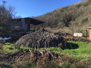 Ağva, Kilimli, Bozgoca Deresi, Şelale Piknik Alanı Hakkında Detaylı Bilgi