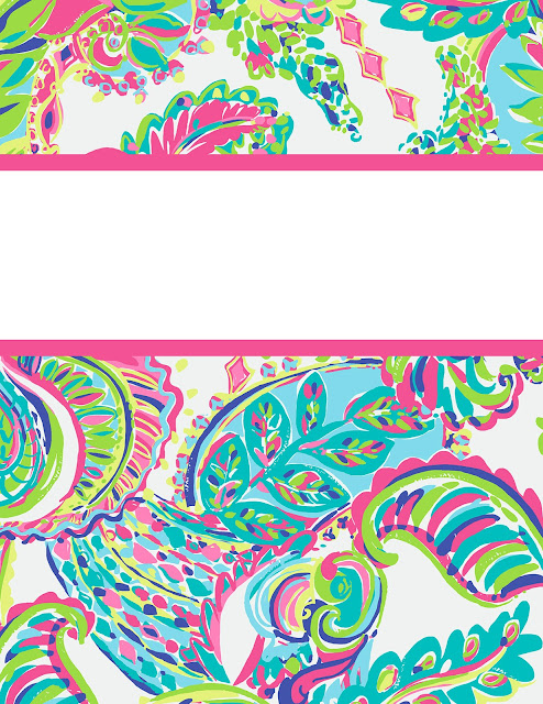 ... Goes Back to School a Fourth Time - Lilly Pulitzer Binder Covers 2016