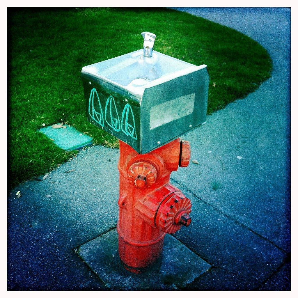 Bigheadtaco.com: Fire Hydrant Slash Drinking Fountain?