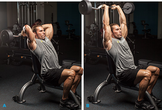 how to get thicker arms