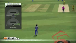 Cricket 2014 PC Game Free Download