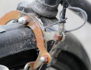 Cobwebs around the brakes on the bike