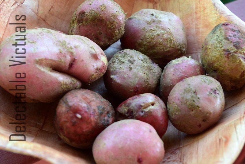 Home-grown Creamy Potato Salad No Mayonnaise