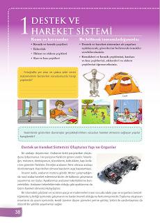 6. Sınıf Fen Bilimleri Ders Kitabı Cevapları Sevgi Yayınları Sayfa 38