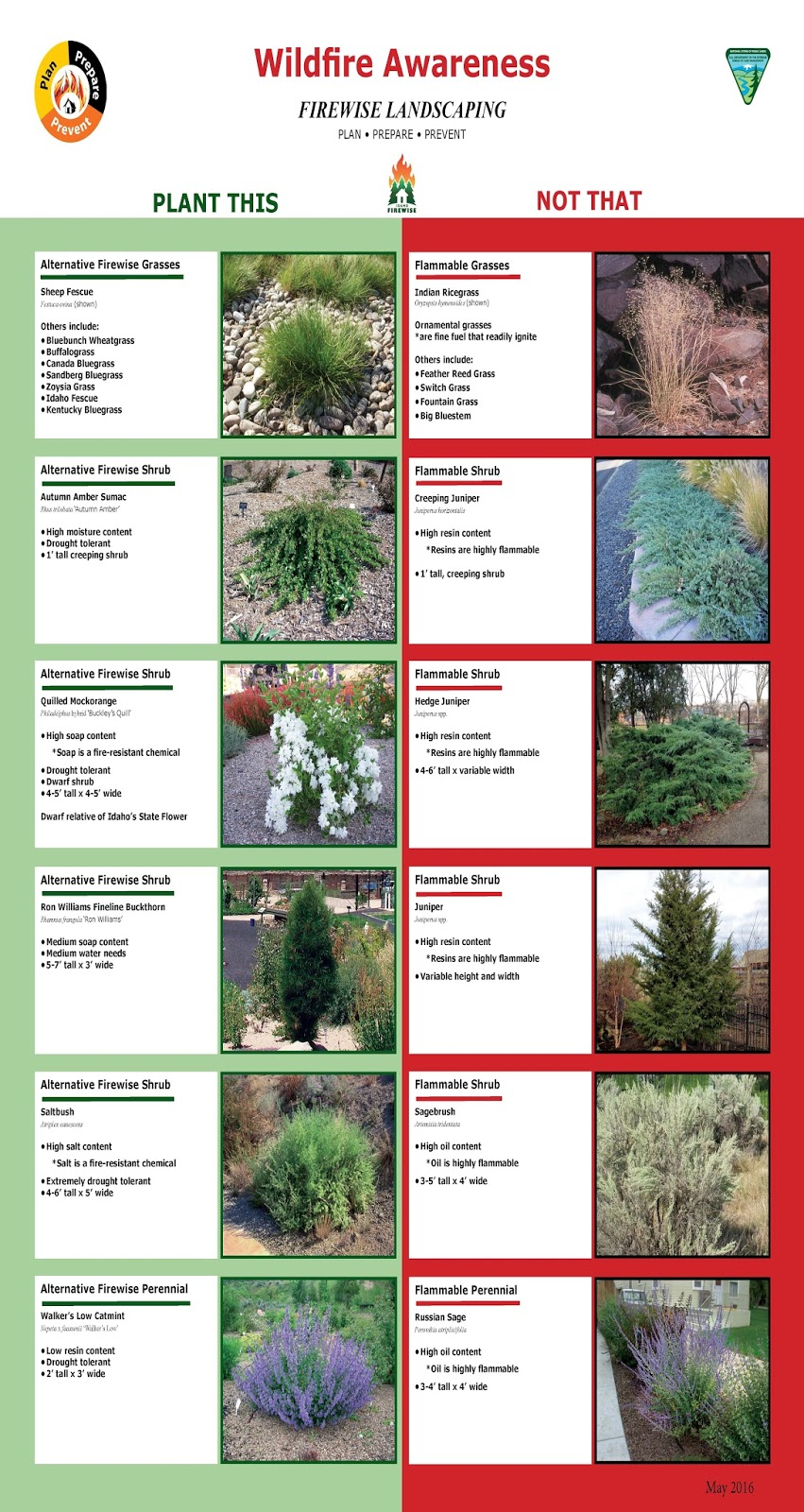 Idaho Fire Information Firewise Plants And Landscaping
