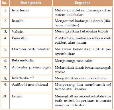 Pengertian Produk dan Manfaat Bioteknologi (Konvesional dan Moderen)