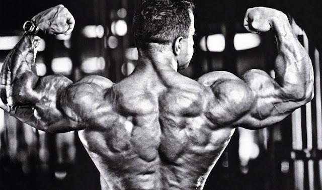 bigger triceps