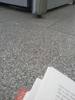 Buch und Boden