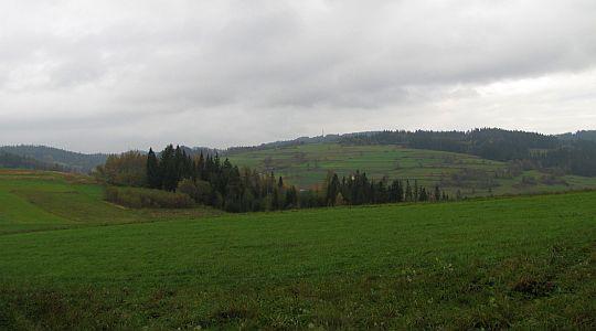 Widok w stronę Bukowińskiego Wierchu.