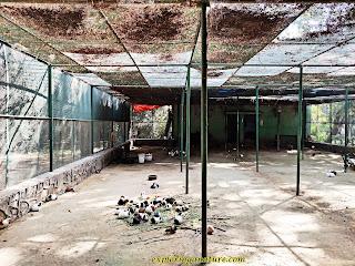 Rabbit Enclosure at Green Park, Hauz Khash