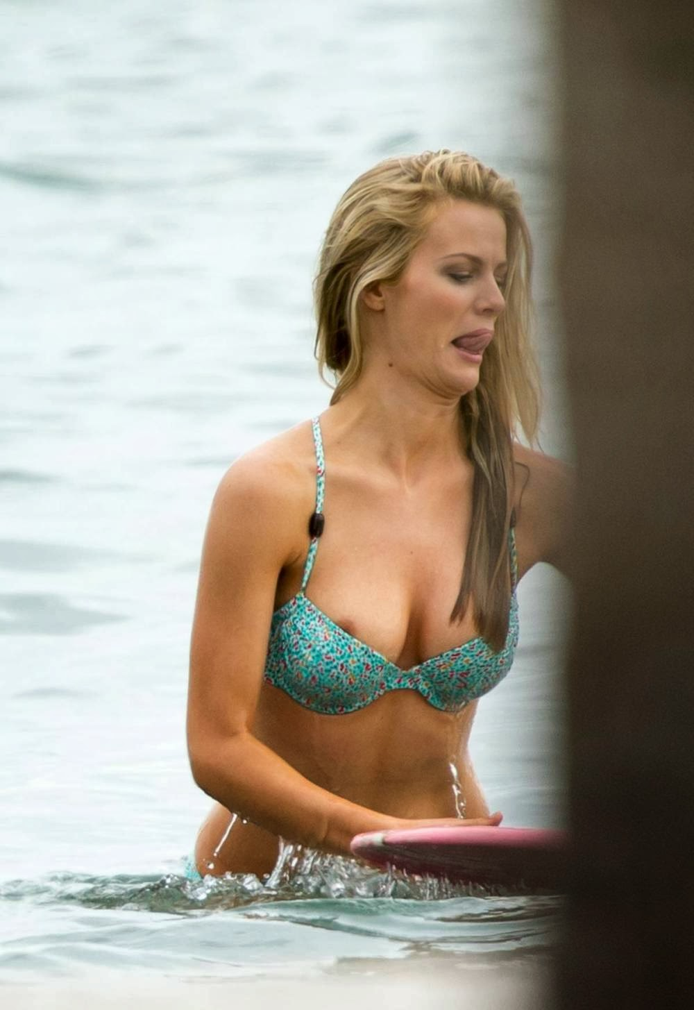 Brooklyn Decker Nip Slip Picture