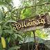 Review Restaurant : ร้านสวนผักน้ำ (Suan Pak Nam)