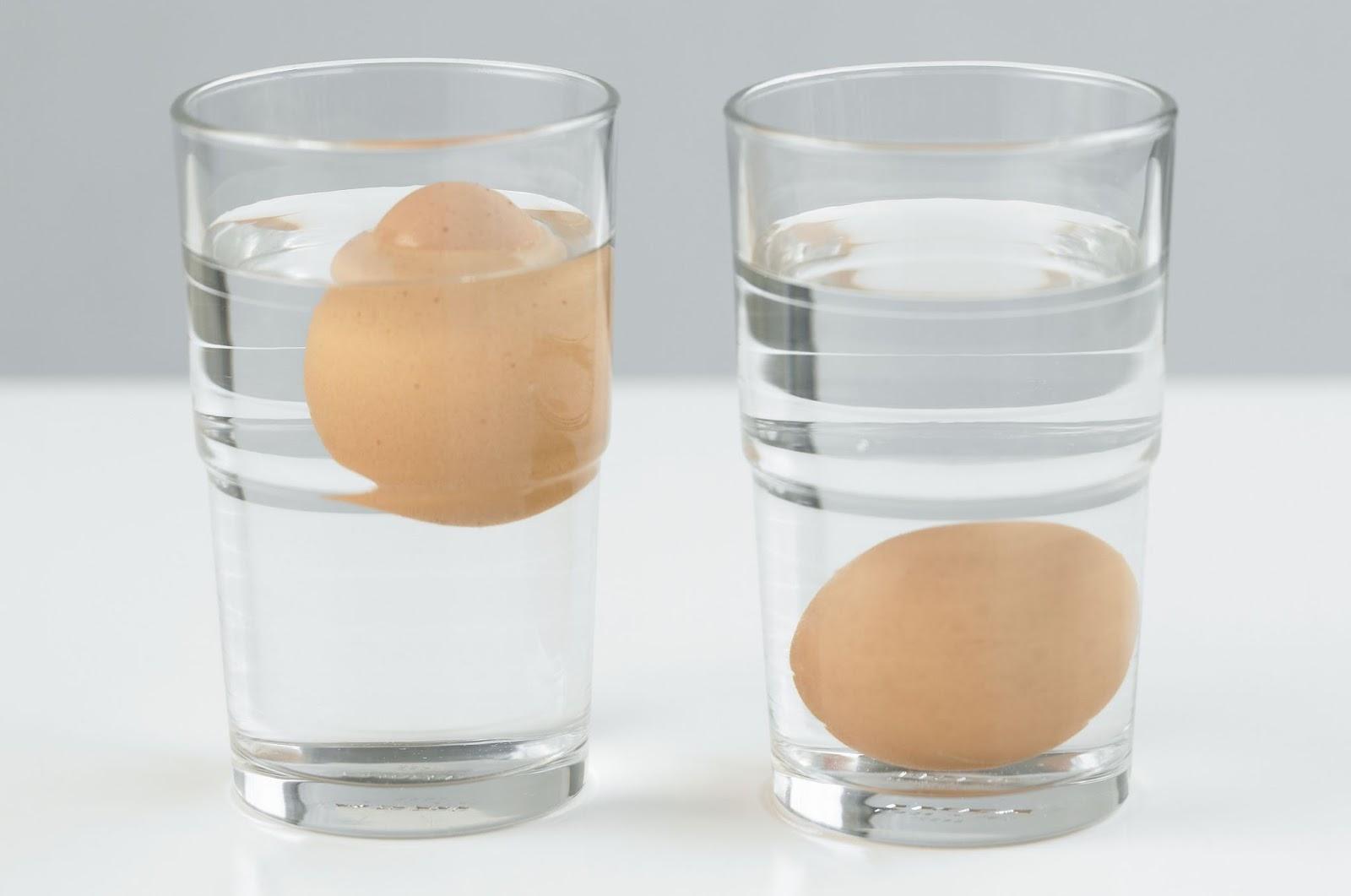 Ketahui Ciri Kualitas Telur Yang Baik Sebelum