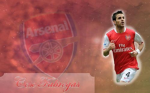 All Football Stars: Cesc Fabregas Hd Wallpapers 2012