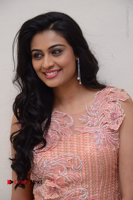 Actress Neha Hinge Stills in Pink Long Dress at Srivalli Teaser Launch  0001.JPG