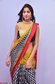 Naziya Khan Model in Saree At Kala Silk Handloom Expo Dec 2017~  Exclusive Galleries 006.jpg