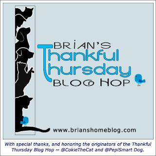 Brian's #ThankfulThursday Blog Hop Badge