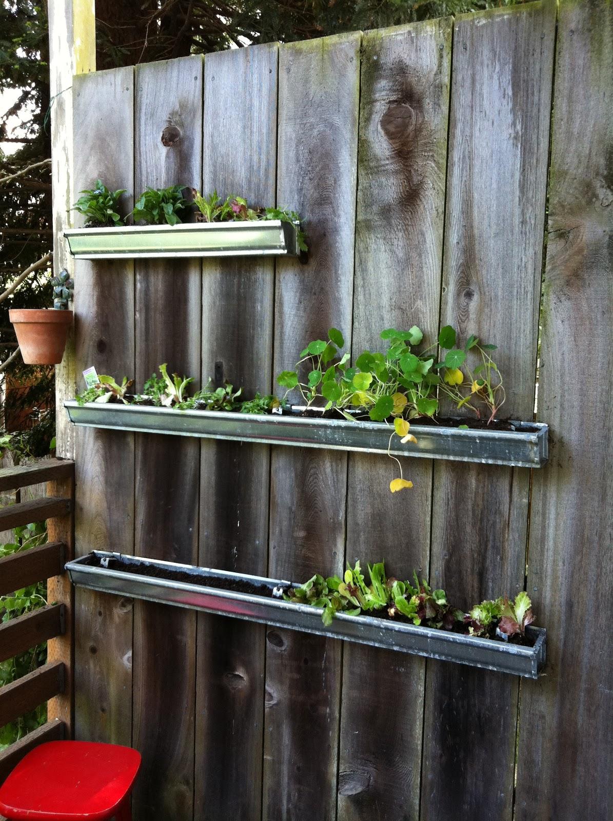 Corner Blog How To Build A Gutter Garden