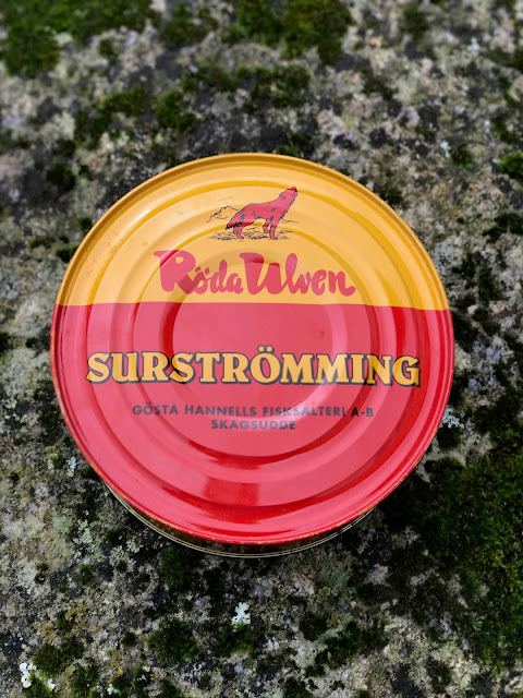 surstromming,  pure food camp, Skane, Sweden
