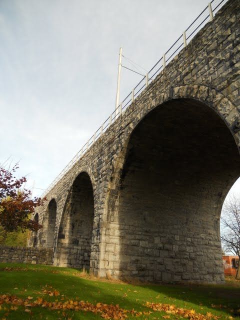Walk the River Dodder in Dublin - Train Bridge