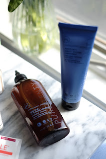Intelligent Nutrients PurePlenty Exfoliating Shampoo & Density Building Conditioner