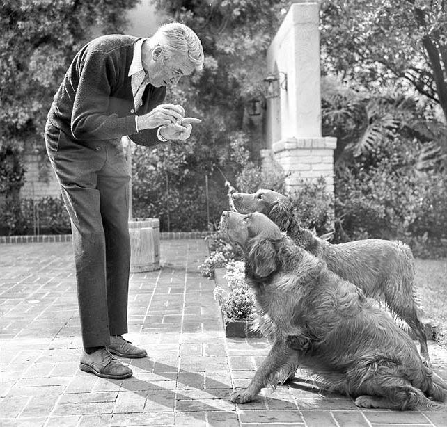 Jimmy Stewart S Dog Named Beau