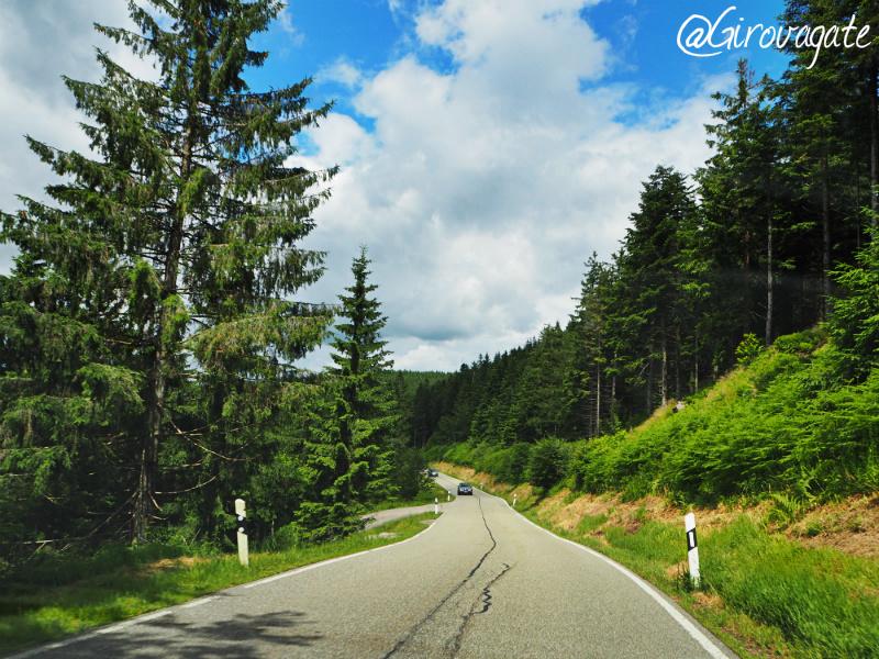 foresta nera schwarzwald