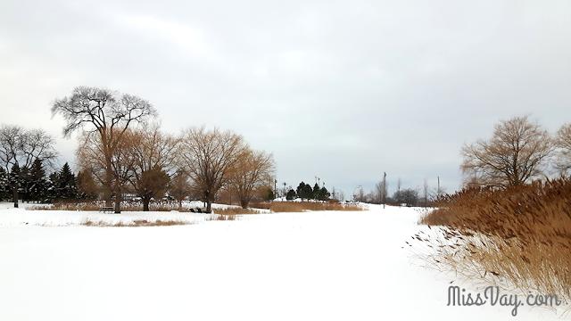 Le parc Jarry Montréal